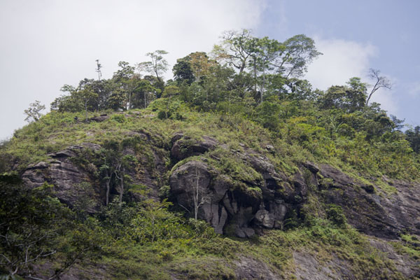 View of the summit of Mount Eloundem from the platform | Mount Eloundem | Cameroon
