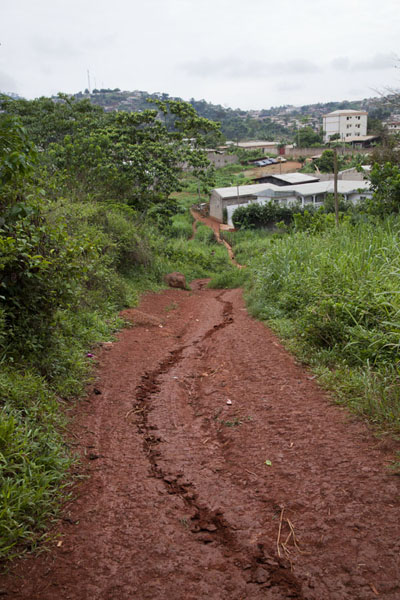 Trail starting from the outskirts of Yaoundé, leading up to Mount Eloundem | Mount Eloundem | Cameroon