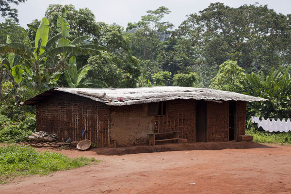 Traditional house at the foot of Mount Eloundem | Mount Eloundem | Cameroon