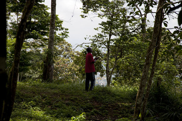 Lone worshipper chanting in the woods on top of Mount Eloundem | Mount Eloundem | Cameroon