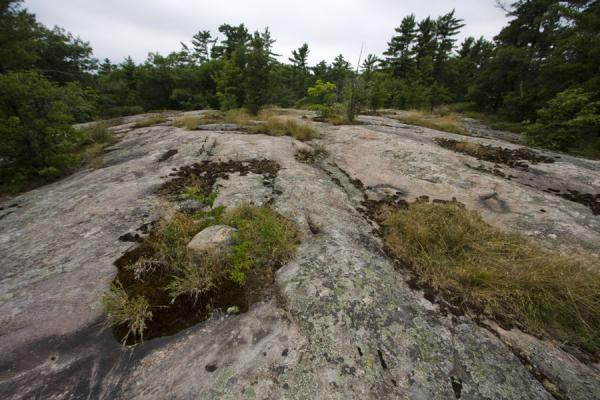 Glaciers carved out these rocks on Beausoleil Island | Beausoleil Island | Canada
