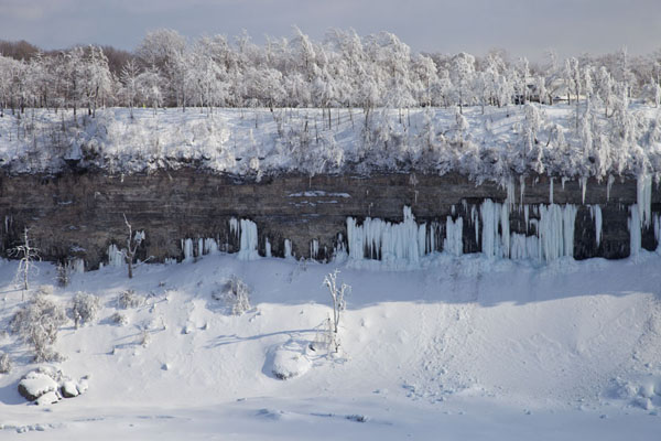 Picture of Frozen Niagara Falls (Canada): View of cliffs with ice falls and ice-covered trees between Horseshoe Falls and Bridal Veil falls