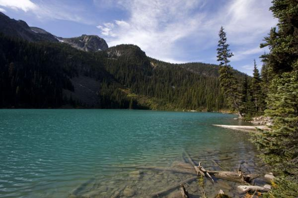 Second Joffre Lake: turquoise between trees | Joffre Lakes | Canada