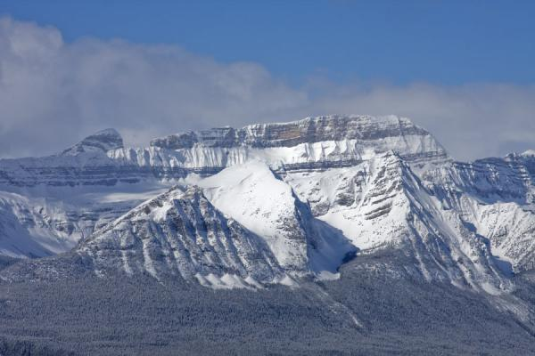 Picture of Snow covered mountains and trees can be seen everywhere in Lake Louise
