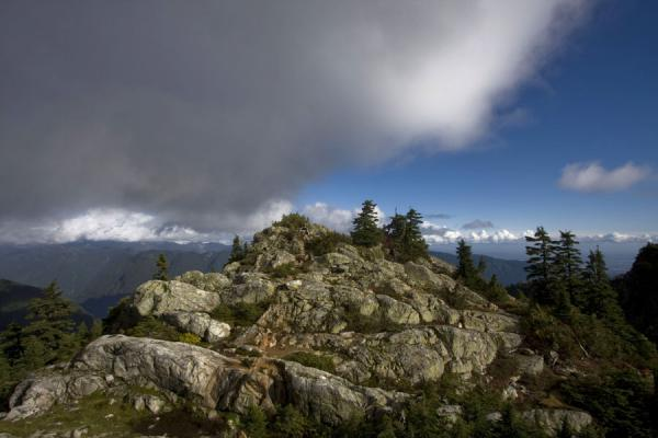 Rocks and trees on the flanks of Mount Seymour | Mount Seymour | Canada