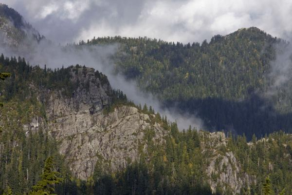 Clouds enveloping the tree-covered mountains | Mount Seymour | Canada