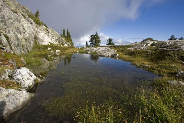 Small lake between the Second and Third Pump Peak of Mount Seymour | Mount Seymour | Canada