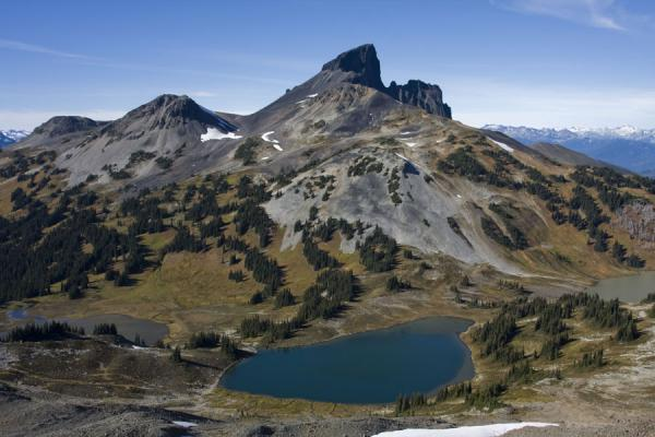 Picture of Panorama Ridge (Canada): Black Tusk seen from Panorama Ridge