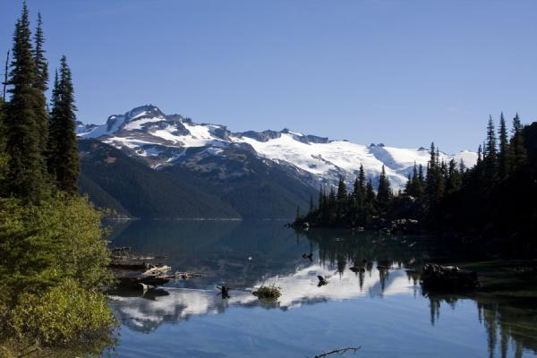 Snow-capped mountains and trees reflected in Garibaldi Lake | Panorama Ridge | Canada