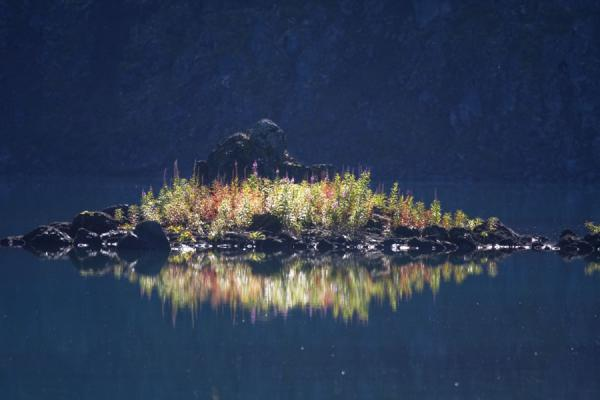 Islet with vegetation in Garibaldi Lake | Panorama Ridge | Canada