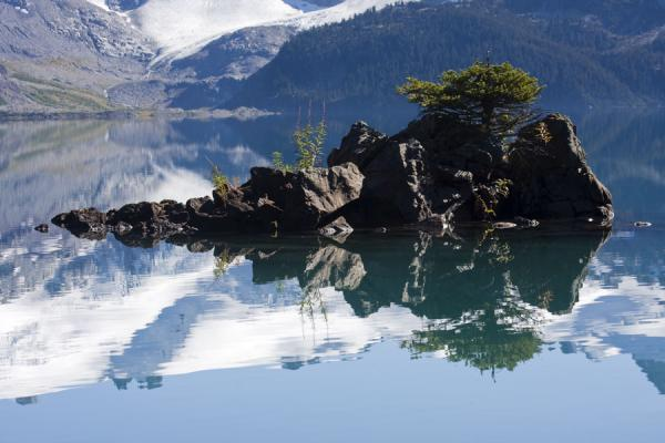 Picture of Panorama Ridge (Canada): Small trees on islet in Garibaldi Lake