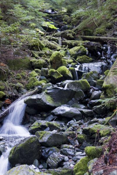 Picture of Panorama Ridge (Canada): Stream coming down over the rocks