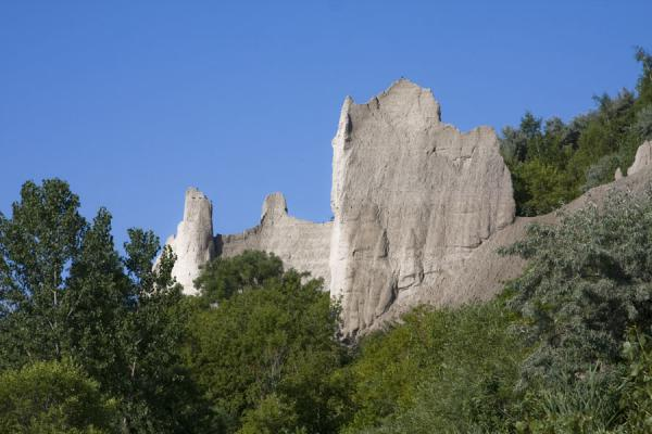 Foto di Scarborough Bluffs towering above the treesScogliere di Scarborough - Canada