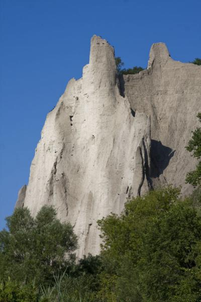 Photo de Scarborough Bluffs towering above the trees - le Canada - Amérique