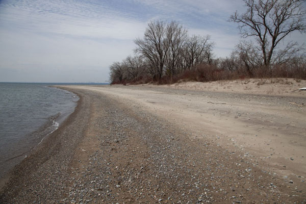 Foto van Beach at the southwestern side of Centre IslandToronto Islands - Canada