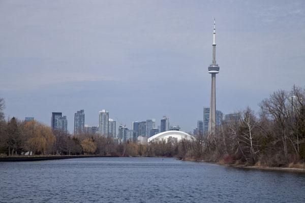 Picture of CN tower dominating the skyline of Toronto, seen from Centre IslandToronto - Canada