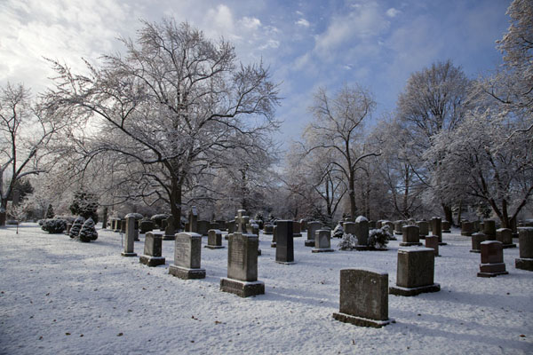 Picture of Tombstones and trees covered with a thin layer of snow in Mount Pleasant cemetery