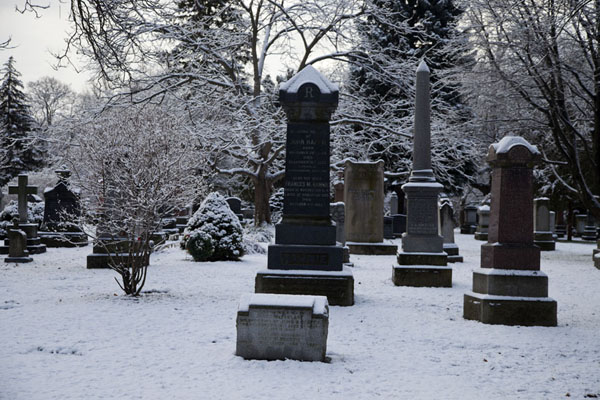 Snow-covered tombstones in Mount Pleasant cemetery | Toronto Ravine Walk | Canada