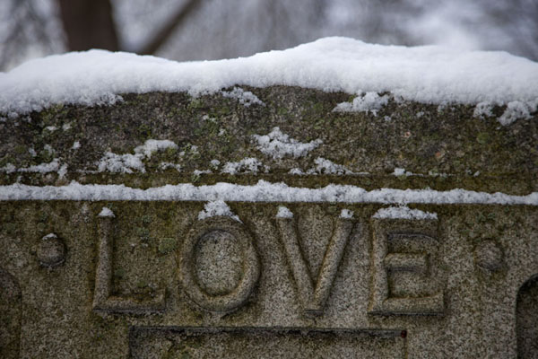 Foto di Close-up of tombstone in Mount Pleasant cemeteryToronto Ravine Walk - Canada