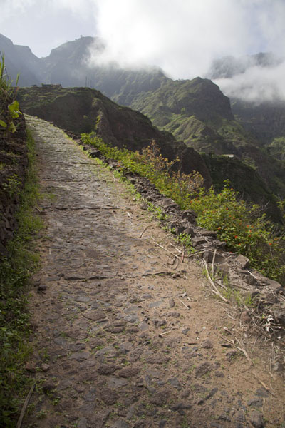 Picture of Coculi to Rabo Curto hike (Cape Verde): Path beyond Pia de Cima