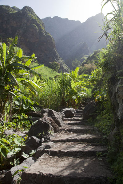Picture of Coculi to Rabo Curto hike (Cape Verde): Path leading through Agriões village in Chã de Pedra