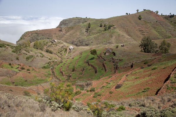 Picture of Coculi to Rabo Curto hike (Cape Verde): Scattered houses in the terraced fields at the top of the Chã de Pedra
