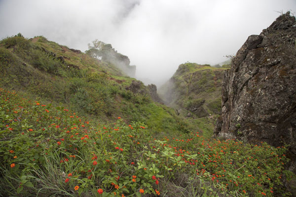 Clouds clinging to the cliffs above Ribeira da Peneda | Paul to Peneda via Cova | 维德角群岛