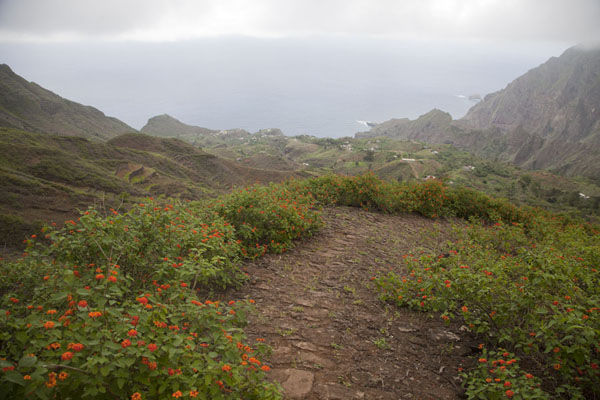 Foto di Trail leading down into the Ribeira da Peneda, with the Atlantic Ocean in the distance - Capo Verde - Africa