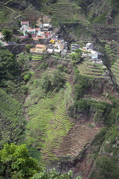 Picture of Ponta do Sol to Chã de Igreja (Cape Verde): Terraces below the mountain village of Fontainhas