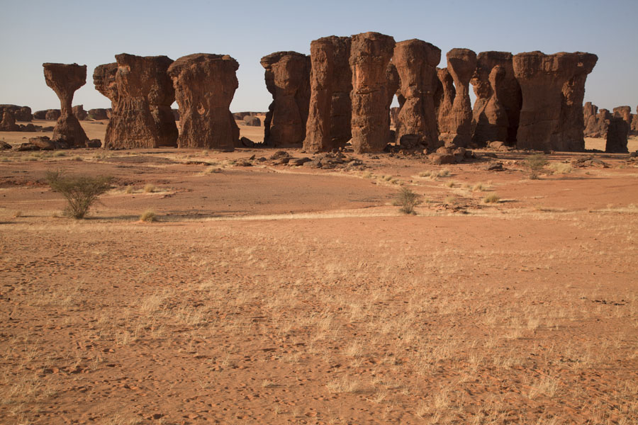 的照片 Collection of sturdy spires on a plain of Abaike Tassili - 查德