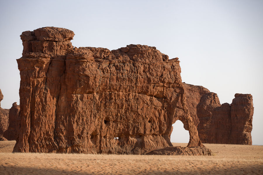 Picture of Abaike Tassili (Chad): Rock in the shape of an elephant on the Abaike Tassili plains