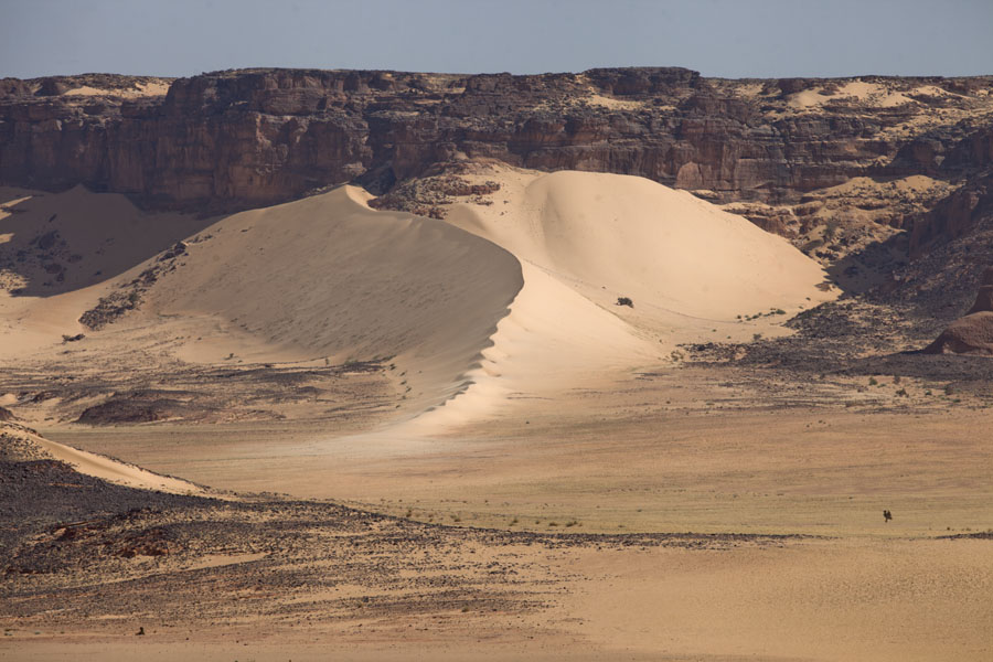 Picture of Curvy crest of sand dune resting against a mountain