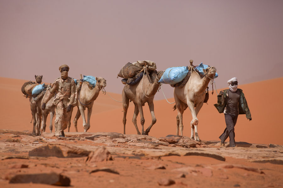 Men leading their camels through the desert | Eyo demi | Tsjaad