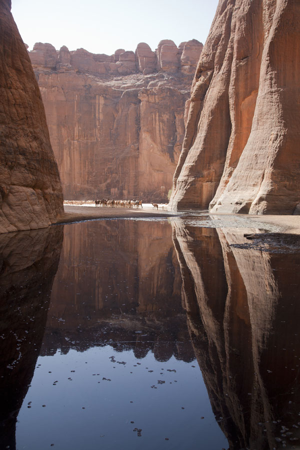 Foto van The walls of the canyon reflected in the dirty water of the Guelta d'ArcheïGuelta d'Archeï - Tsjaad