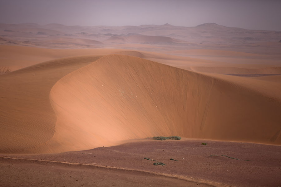 Endless view of sand dunes in the Koraa region - 查德