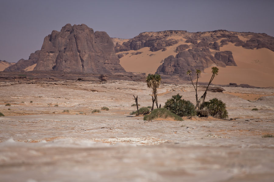Rocks and sand with a group of trees in the foreground | Koraa | Chad
