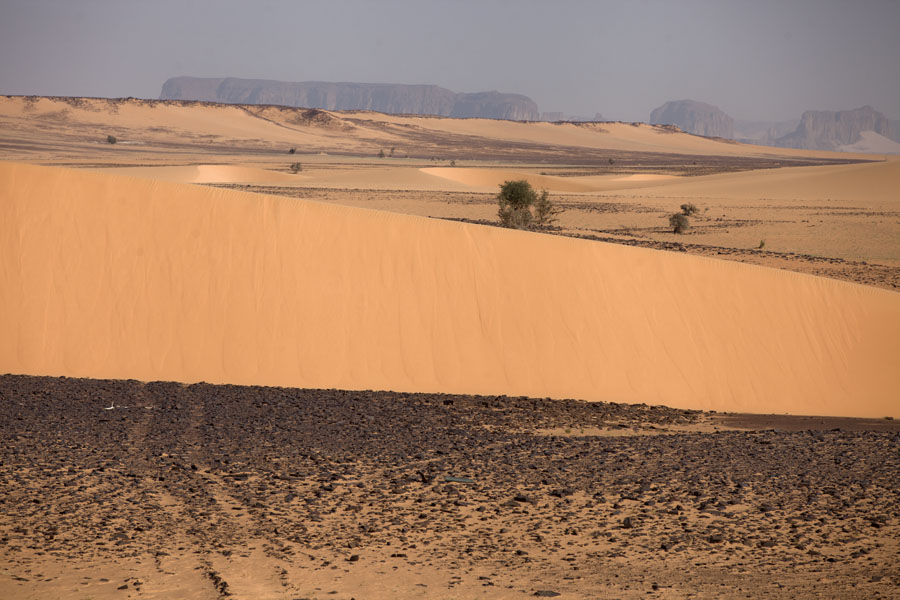 Picture of Rocky mountains in the distance, sand dune in the foreground - Chad - Africa