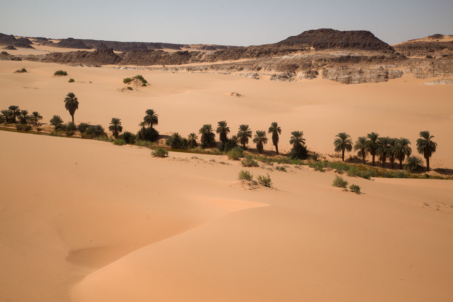 Foto van Strip of palm trees and narrow lake in the middle of the desertOUnianga - Tsjaad