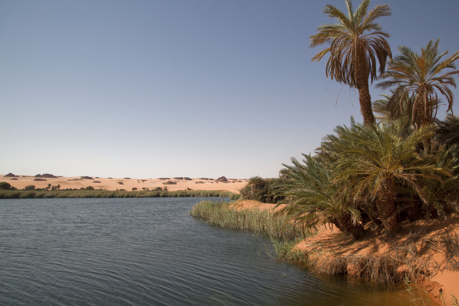 Foto van Fresh water Ounianga Serir is perfect for a swim in the middle of the Sahara desert - Tsjaad - Afrika