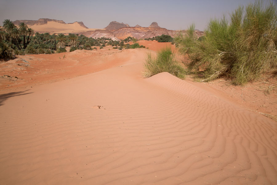 Sand dune landscape near salt lake of Teguedei | Teguedei Salt Lakes | Chad