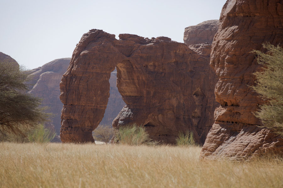 Picture of Tokou massif (Chad): Rock formation resembling an elephant in the Tokou massif