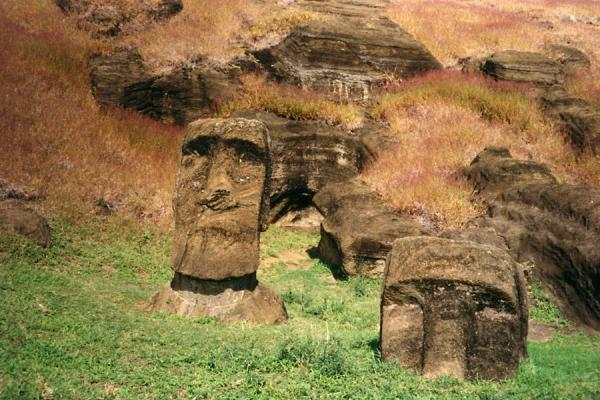 Foto de Statues that were carved out but never made it to their final destinationIsla de Pascua - Chile