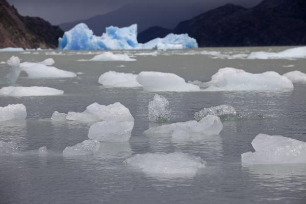 Foto di Icebergs of all sizes floating down Lago Grey - Cile - America