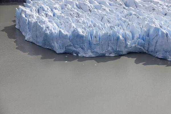 Picture of View of the face of Grey Glacier