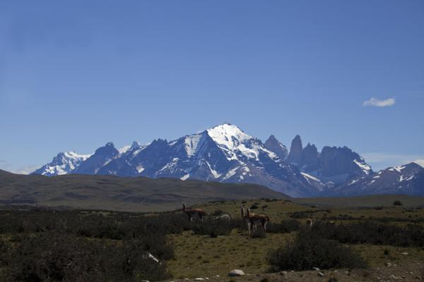Foto van Entire Torres del Paine range seen from a distanceTorres del Paine - Chili