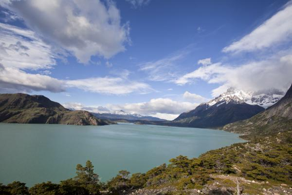 Foto di Lago Skottsberg seen from the northern sideTorres del Paine - Cile