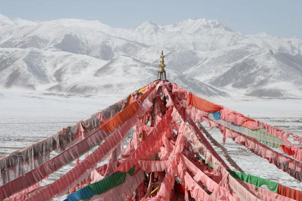 Colourful prayer flags contrasting with white mountains at Batang sky burial | Batang hemelbegrafenis | China