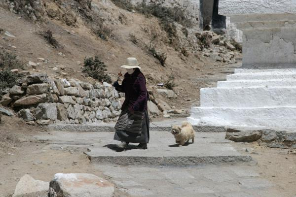 Picture of Drepung monastery (China): Tibetan pilgrim walking her kora with a dog