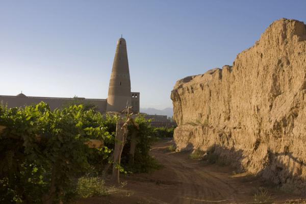Picture of Emin minaret (China): Emin minaret with vineyards