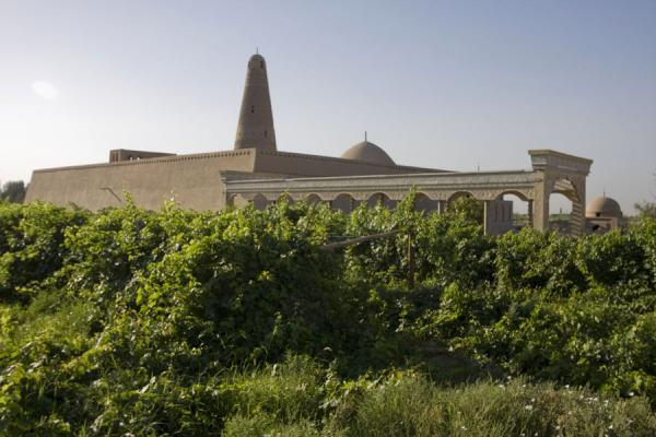 Picture of Emin minaret (China): Emin minaret towering above the grape fields